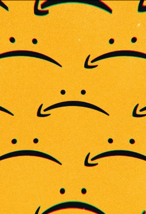 Amazon Reduces Fees: Revenue of the Websites Will Fall 2-3 Times